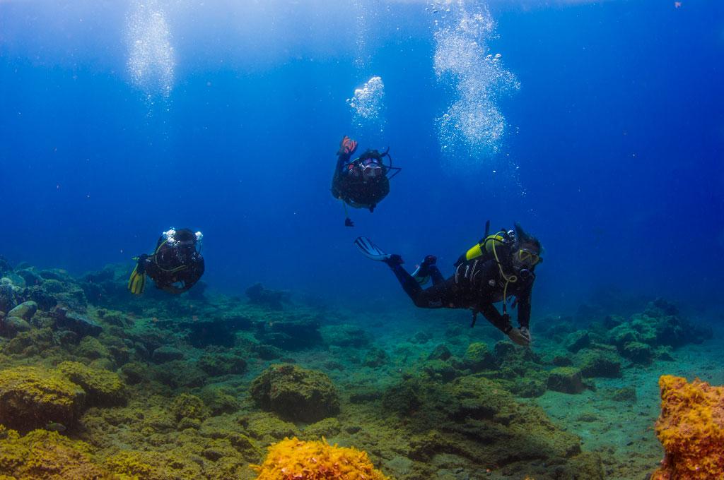 Tres buceadores en un dia de buceo durante una excursión nautica en Tenerife Sur Las Galletas